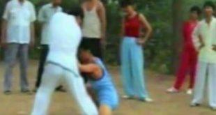 tai-chi-chuan-qinna-saisies-tuishou-zheng-xu-dong-luoyang-1989-taichi-taiji-quan-lyon
