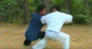 tai-chi-chuan-tuishou-zheng-xu-dong-luoyang-1989-taichi-taiji-quan-lyon