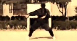 Chen-Boxiang-Tai-Chi-style-Chen-Xiaojia-Erlu-Paochui-Chenjiagou-Bo-Xiang-1980-Taichi-Lyon