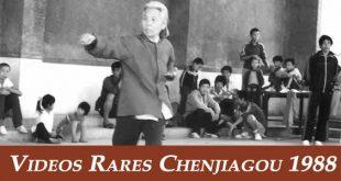 serie-video-chenjiagou-1988-tai-chi-chuan-style-chen-taichi-tuishou-lyon