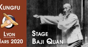 Kung-Fu-Lyon-Baji-Quan-Stage-2020