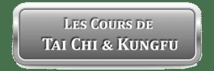 Cours Taichi Lyon Kungfu Wushu Enfants Croix-Rousse Lyon 8