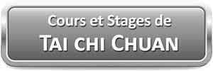Tai Chi Chuan Lyon Cours Stages Taichi style Chen Taijiquan