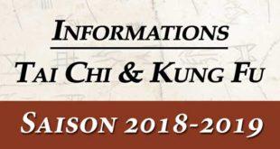 Tai Chi Lyon Kungfu Enfants Wushu Taichi style Chen
