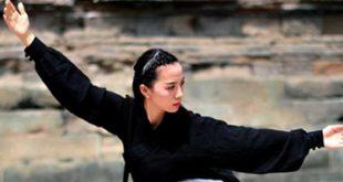 Tai Chi Lyon Week End Dimanches TaiChi Taijiquan style Chen Novembre 2018