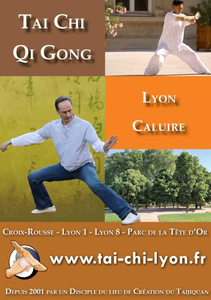 Tai Chi Lyon Qi Gong Caluire Parc Tete Or 2019 2020 Taijiquan style Chen