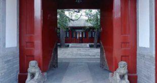 taijiquan parc lyon cour interieure moderne traditionnel