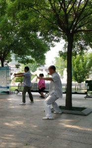 taijiquan parc chenjiagou style Chen