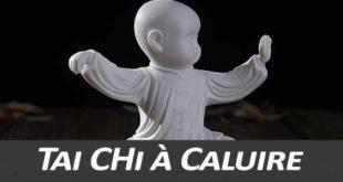 Tai Chi Caluire Montessuy Taijiquan style Chen